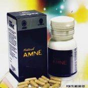 AMNE ASAM AMINO EVOLUTION 30 kapsul - herb.co.id