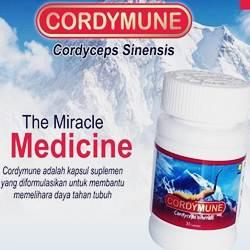 32 - CORDY CORDYMUNE - herb.co.id