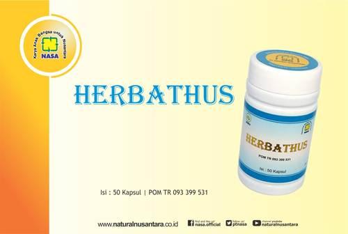 37 - HERBATHUS - Obat Asam Urat Alami