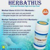 HERTHUS HERBATHUS - www.herb.co.id