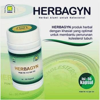 HERGYN HERBAGYN - Obat Penurun Kolesterol Alami - Herb.co.id