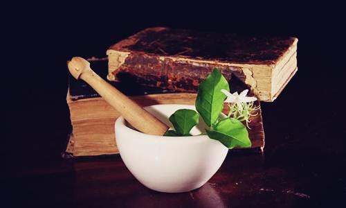 Perkembangan Pemakaian Obat Herbal di Luar Negeri - Herb.co.id