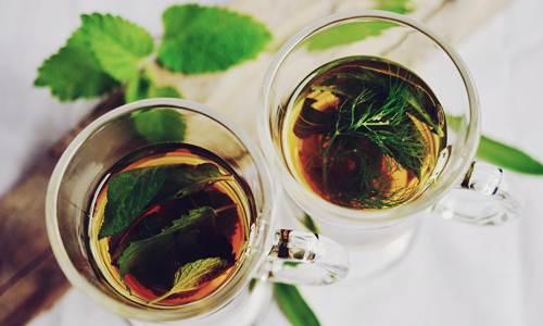 Pemanfaatan Tanaman Obat Herbal Untuk Kesehatan - Herb.co.id